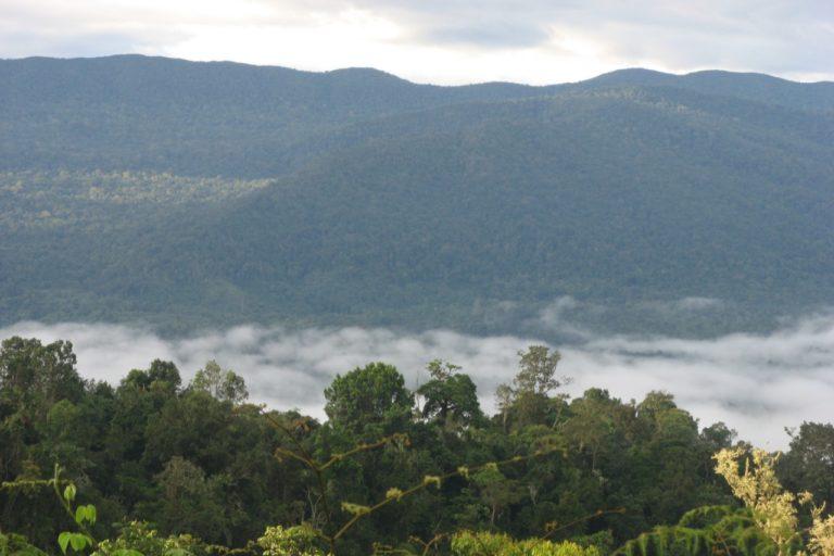 Siempre cubierno de nubes Galilea es uno de los pocos relictos de bosque nuboso que quedan en Colombia 768x512 1