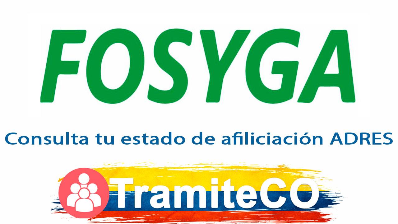 FOSYGA Consulta tu estado de afiliación Colombia 'agosto